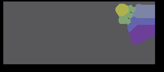 mavv logo